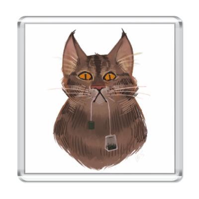 Магнит Чайный кот