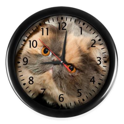 Настенные часы Любимец