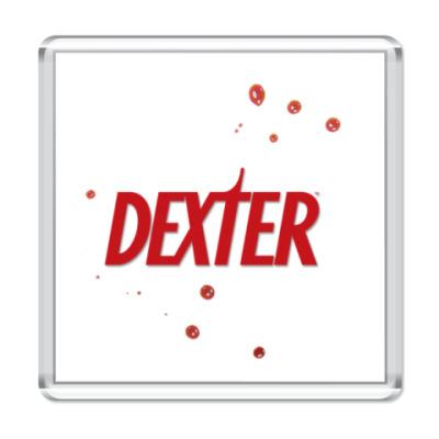 Магнит  Dexter
