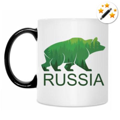 Кружка-хамелеон Россия, Russia