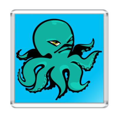 Магнит octopus