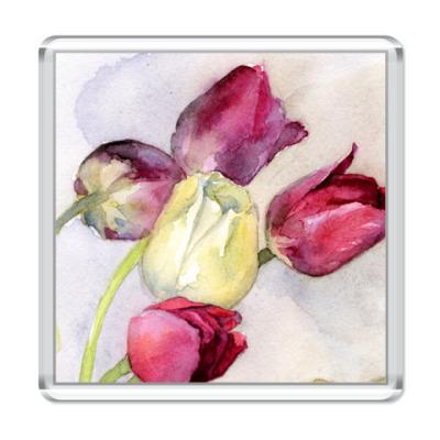 Магнит  Тюльпаны