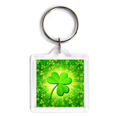Брелок My Irish soul