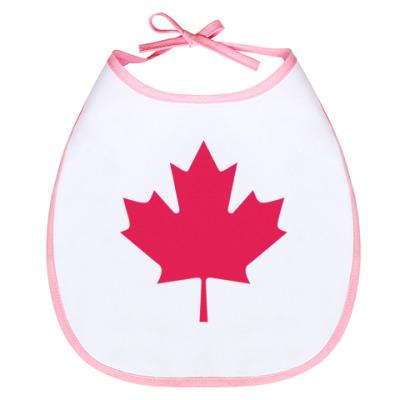 Слюнявчик Канада
