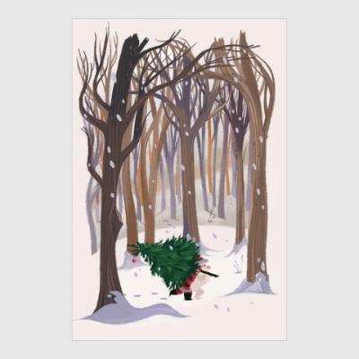Постер/холст  'Из леса'