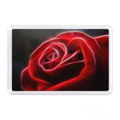 Магнит Роза - красный цветок
