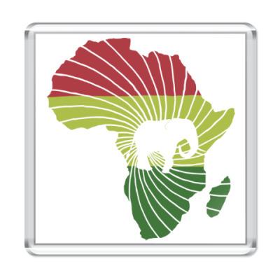 Магнит Африканский слон