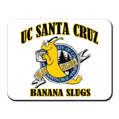 uc santa cruz banana slugs