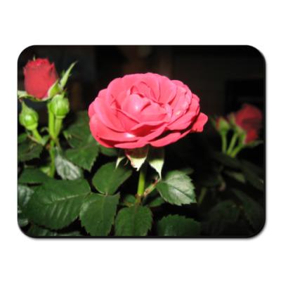 Коврик для мыши Розы