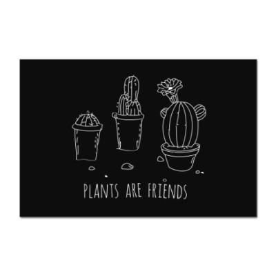 Наклейка (стикер) Plants are friends