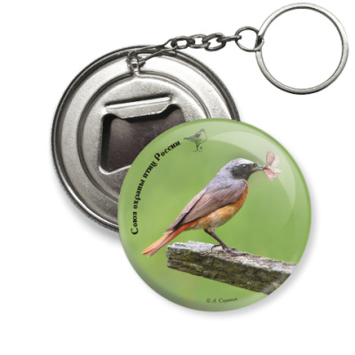 Брелок-открывашка Обыкновенная горихвостка