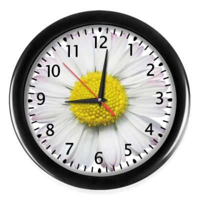 Настенные часы Ромашка