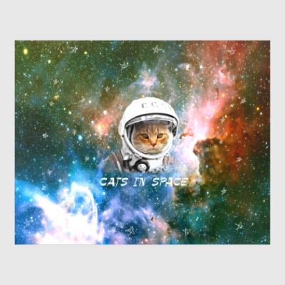 Постер котейка космонавт