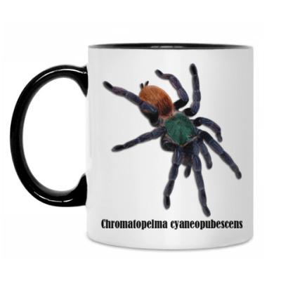 Кружка Cyaneopubescens