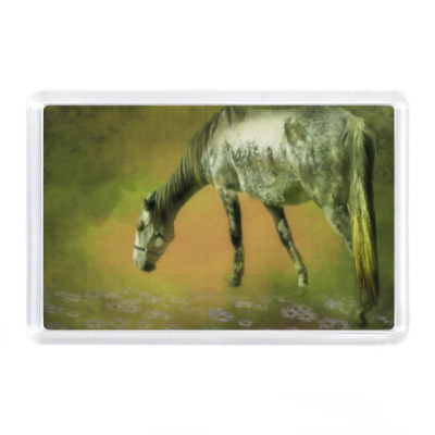 Магнит Лошадь на лугу