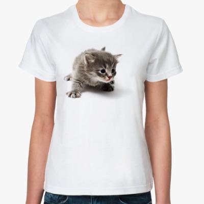 Классическая футболка Любопытный котенок