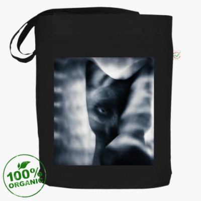 Сумка Black cat
