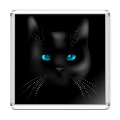 Магнит  Black Cat