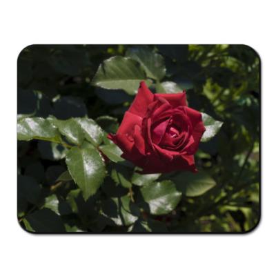 Коврик для мыши Rose