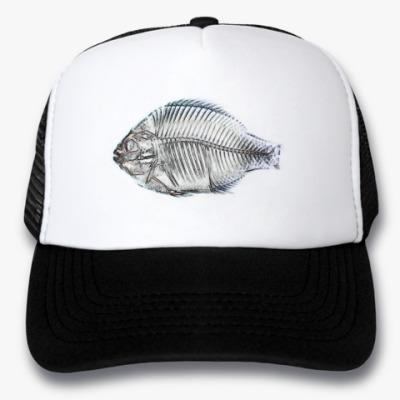 Кепка-тракер fish x-ray