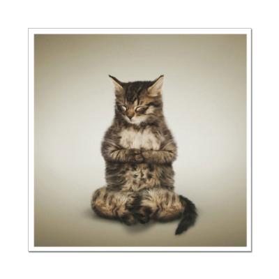 Наклейка (стикер) Кот медитирует