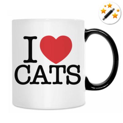 Кружка-хамелеон i love Cats