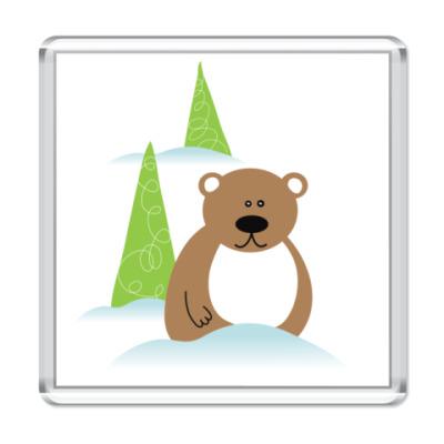 Магнит Медведь