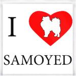 I love Samoyed