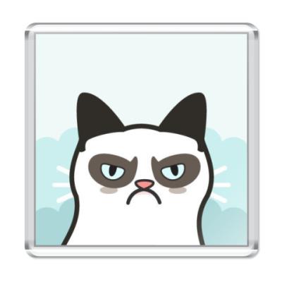 Магнит Grumpy Cat