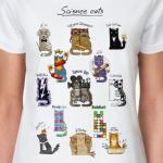 История открытий в котиках
