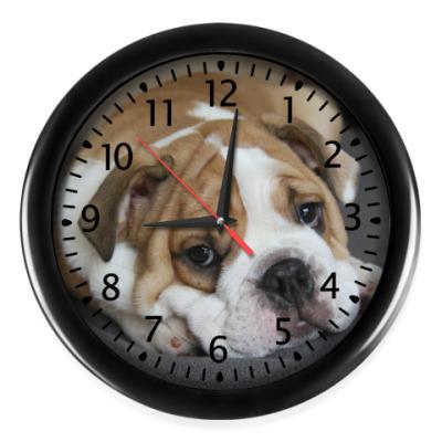 Настенные часы  Пес