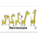 Эволюция жирафов