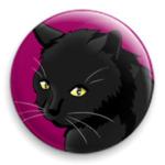 'Черный кот'