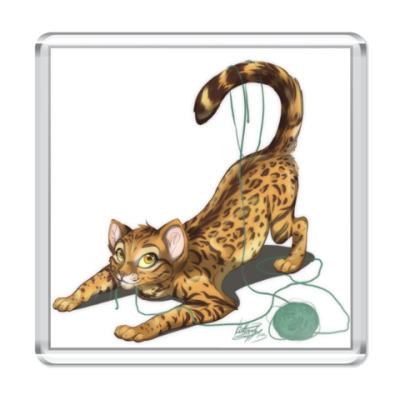 Магнит бенгальский котик