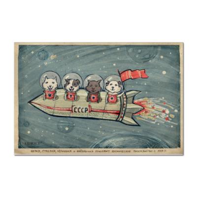 Наклейка (стикер) Космонавты