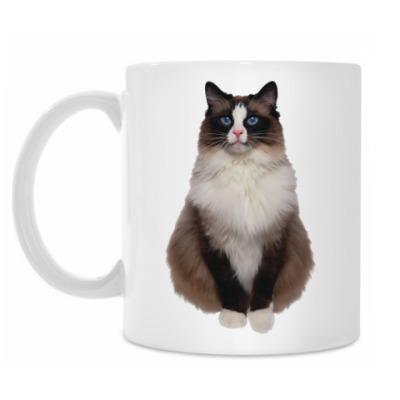 Кружка Blue Eyed Cat