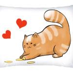 Кот Мягкот, рыжий живот!