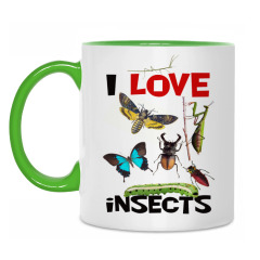 I love insects