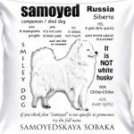 FAQ. Adult Samoyed